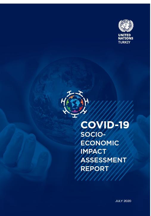 UN Turkey Socio-Economic Impact Assessment Report