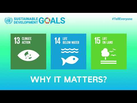 SDGs 13, 14 and 15 -- Making Peace with Nature --
